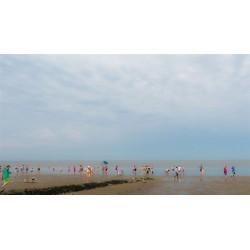 Strandmenschen VI